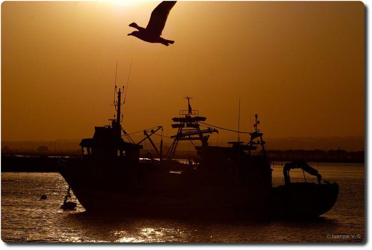 3_isla_atardecer _puerto